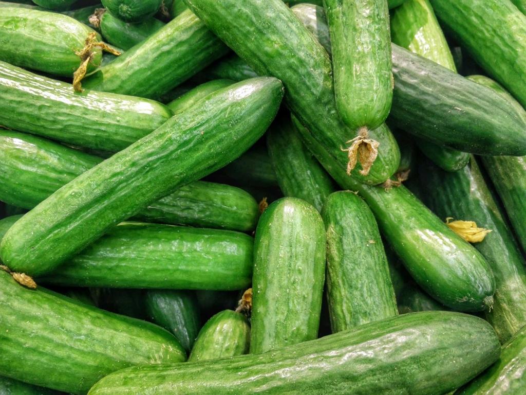 Hoe gezond is een komkommer?